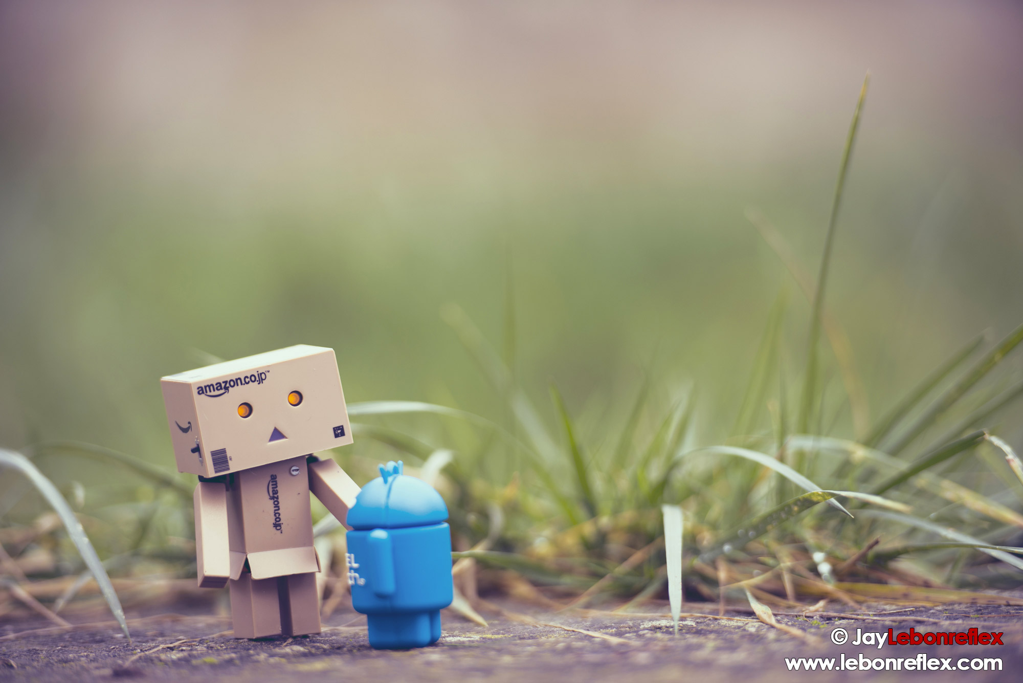 Danboard vs Android